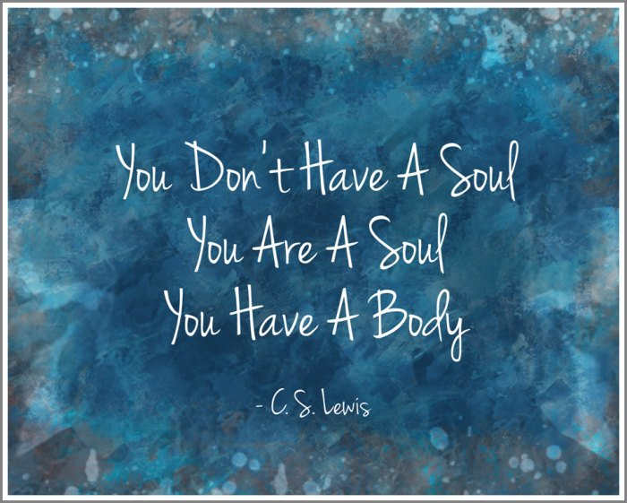 Image result for You don't have a soul. You are a soul. You have a body